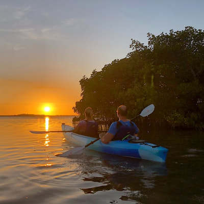 sunset clearwater kayaking